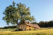 altes Kellerstöckel im Burgenland