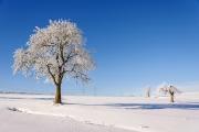 Winterlandschaft bei Dorfilm